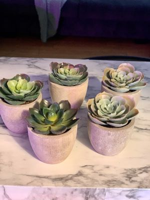 Fake Succulents in Ceramic Pot for Sale in Crowley, TX