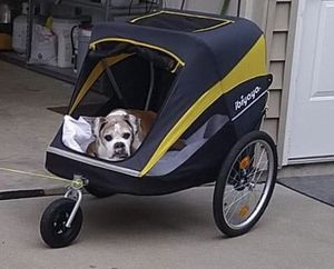 Pet (dog) stroller for Sale in Augusta, MO