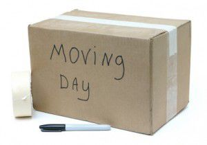 Need help moving Sunday Sept 1st. for Sale in Ruskin, FL