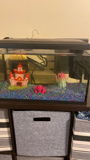 10 gallon fish tank for Sale in Colorado Springs, CO