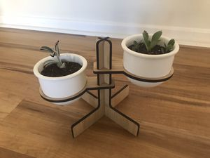 Succulent/plant bamboo stand for Sale in San Diego, CA