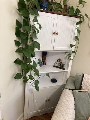 Kitchen corner cabinet for Sale in Arlington, VA