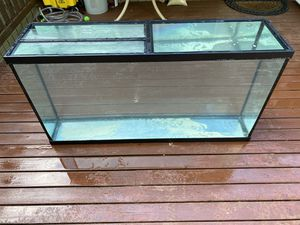 60 gallon fish tank/aquarium with stand (tempered glass) for Sale in Renton, WA