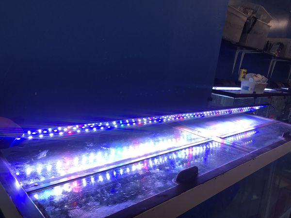 90 gallon aquarium fish tank complete $500