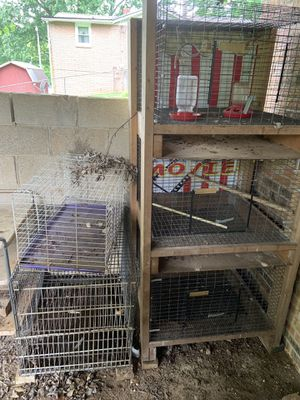 Animal cages for Sale in Henderson, KY