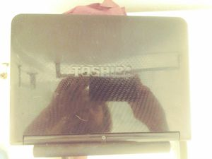 Toshiba Laptop for Sale in Lakewood, CO