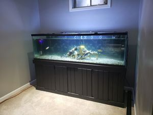 100 gallon tank and stand for Sale in UPPR MARLBORO, MD