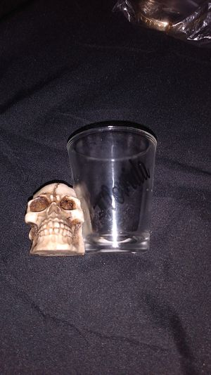 Skull collectible shot glass. Florida. for Sale in Quitman, TX