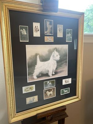 Limited edition framed vintage Westie cigarette card Cole toon. for Sale in Katy, TX