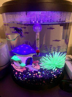 Fish Tank for Sale in Carrollton, TX