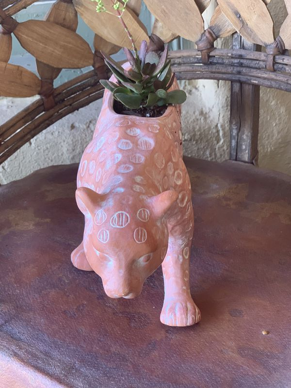Leopard planter with live succulent