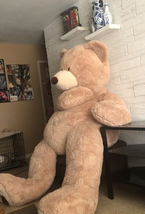 Who wants this big teddy bear $500 teddy bear offer me something for Sale in Oakland Park, FL