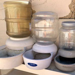 Replenishing Dog Food Bowls for Sale in Phoenix, AZ