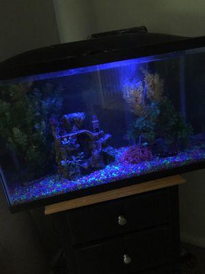 22 Gallon Fish tank for Sale in Irmo, SC