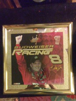 NASCAR..Dale Earnhardt Jr. for Sale in Rancho Cucamonga,  CA