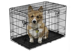 """Vibrant Life Double-Door Folding Dog Crate with Divider, 30"""" for Sale in Hayward, CA"""