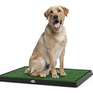 Artificial Grass Potty Training Mat For Dogs for Sale in Mesa, AZ