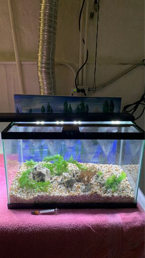 Must see Aquarium Tanks and supplies, See pictures . for Sale in Chicago, IL
