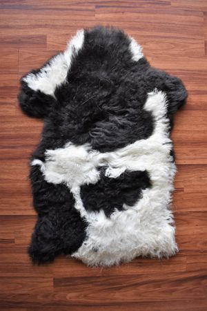 Natural Sheepskin Rug, Brand New, Imported, Original Leather, 2'x3' for Sale in Arlington Heights, IL
