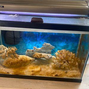 Salt Water Fish Tank for Sale in Long Branch, NJ
