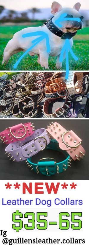 Collars for Sale in Irwindale, CA