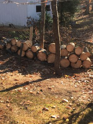 camp firewood cut for Sale in Rindge, NH