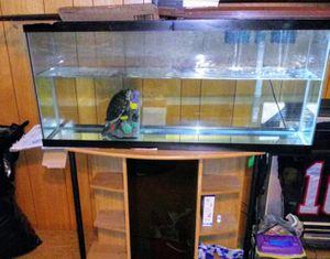 55 gallon long aquarium for Sale in Baltimore, MD