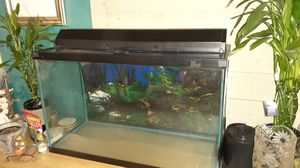 30 gallon fish tank with lid, lights and a filter(no leaks) for Sale in Chicago, IL