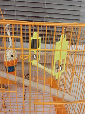 Bird cage with accessories, food, treats. for Sale in San Diego, CA