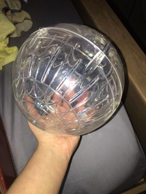Hamster ball for Sale in Sidney, OH