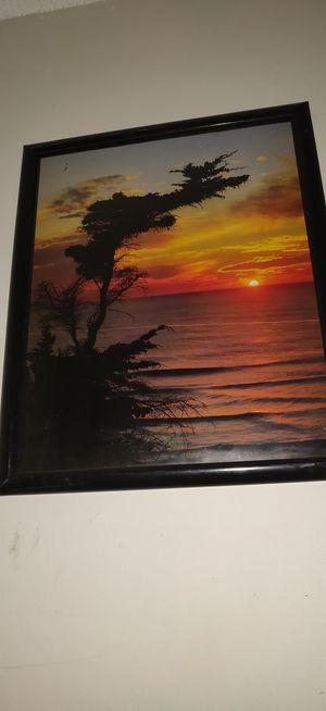 Art for Sale in NEW PRT RCHY, FL