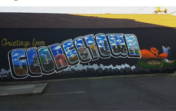 Mural Artist for hire