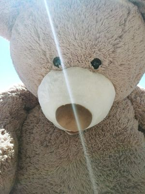 Giant 5ft. Teddy Bears and Large Bull Dog that unfolds to a pillow for Sale in Phoenix, AZ