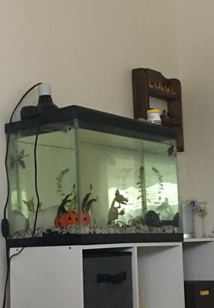 fish tank for Sale in Brook Park, OH