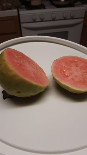 Pink guava for sale for Sale in Colton, CA