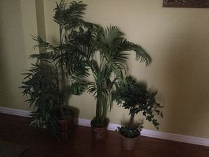 Home Decor Artificial Plants for Sale in Lithia Springs, GA