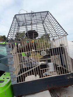 Bird cage for Sale in Yukon,  OK
