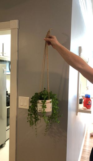Fake hanging plant for Sale in Los Angeles, CA