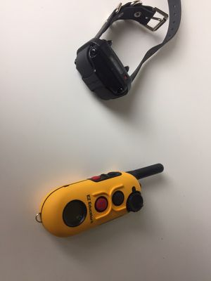 Dog e-collar Trainer for Sale in Temecula, CA