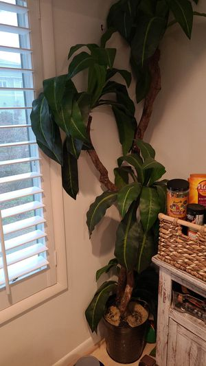 House plant fake. Very tall for Sale in Virginia Beach, VA