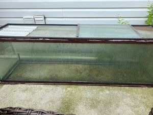 Fish tank for Sale in District Heights, MD