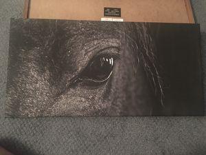 Horse canvas decor art 23.75x11.75in for Sale in North Brunswick Township, NJ