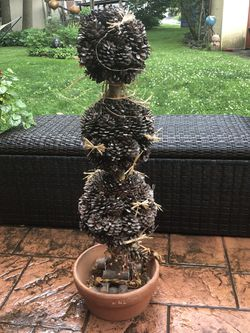 Topiary tree for Sale in Drexel Hill,  PA