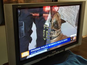"TV 42"" Panasonic Viera plasma tv for Sale in Scottsdale, AZ"