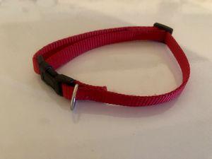 xs/sm dog collar for Sale in Orlando, FL