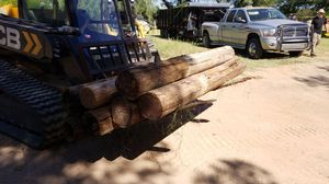 20 Fence post free while they last for Sale in Glendale, AZ