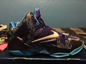 Lebron 11 Hornets ** Must Go** for Sale in Miami, FL