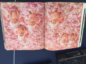 ANNE GEDDES BOOK AN AUTOBIOGRAPHY A Labor of Love for Sale in San Diego, CA