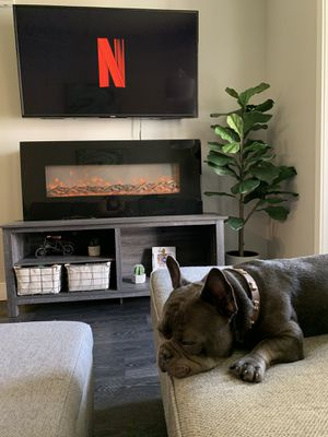 """Electric Fireplace 50"""" for Sale in Denver, CO"""