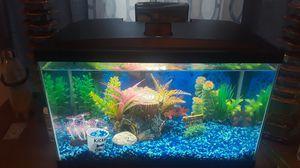 Fish Tank for Sale in El Paso, TX